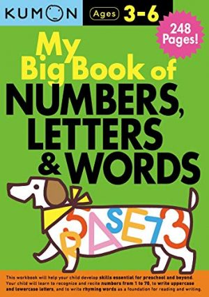 My Big Book of Numbers, Letters, and Words